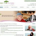 Eldercare Solutions of Michigan