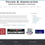 Young & Associates Complex Business Litigation